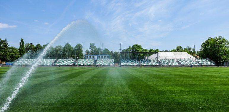 Ogródek, stadion Warty Poznań